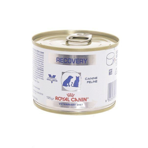 Корм royal canin recovery паштет